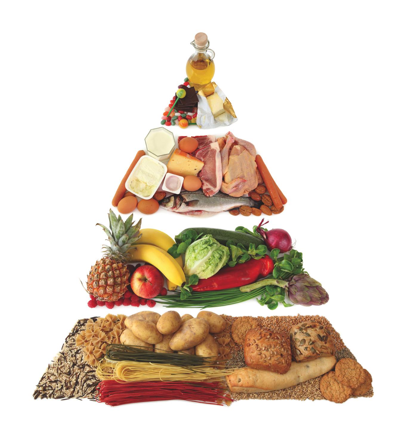 balanced food for healthy life essay